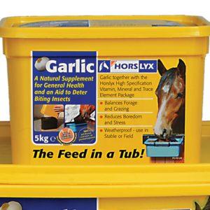 Horselyx Garlic Lick 5kg